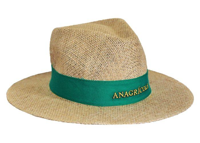 anagrícola 2